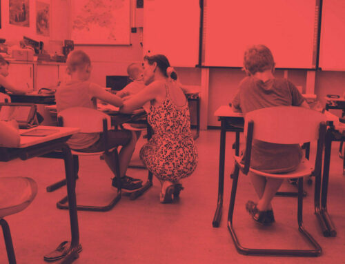 The Universal Design for Learning (UDL)